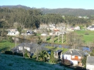 1171471540_PEDRIDO1
